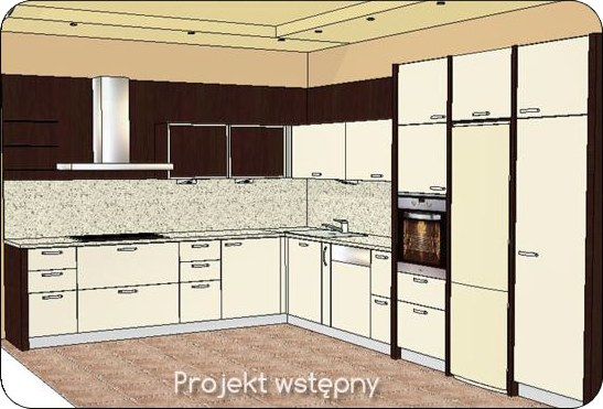 Projekt wstęny kuchni